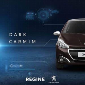 post social media Regine Peugeot